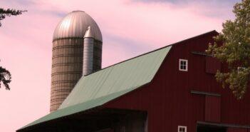 Bioenergie: in erneuerbare Energie investieren